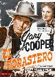 EL FORASTERO (DVD)